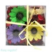 Сухоцветы в коробке, 14х14х5 см