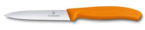Нож для овощей и фруктов 10см SwissClassic Victorinox 6.7736.L9 - фото 99692