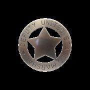 Значок помощника маршала США DE-107