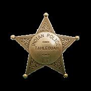 Значок полицейского США DE-108
