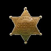 Значок окружного шерифа DE-113-L