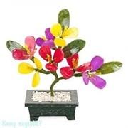 Бонсай «Цветы персика», h=17 см