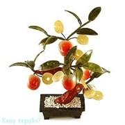 Бонсай «Персиковое дерево с монетами», h=25 см