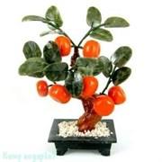 Бонсай «Мандарины», 7 плодов, 23 см