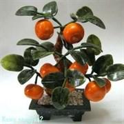 Дерево «Мандарины», 8 плодов