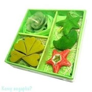 Набор ароматический, зеленый, 9,5x9,5x3 см