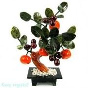 Дерево из 5 мандаринов и винограда, h=25 см